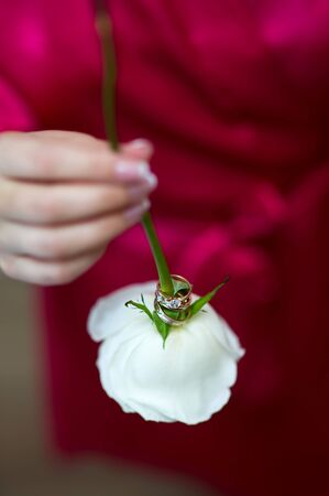 the bride holds a flower, on the stem of which are worn wedding and engagement rings. The bride in defocus in the background. Vertical frame