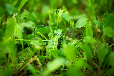 thin-framed lost vision glasses lie in the grass. close up