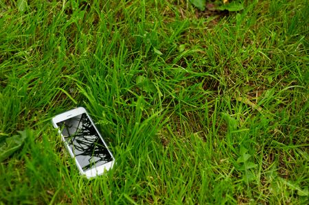 white smartphone lies in green grass. Copy space