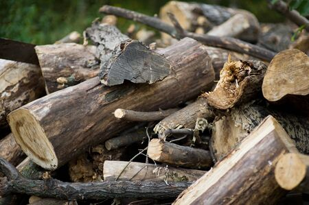 a pile of broken and sawn firewood in the village. Selective focus
