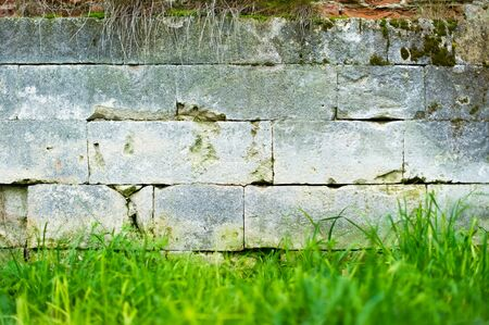 a stone wall on which moss grows, grass grows under it and some vegetation hangs on top
