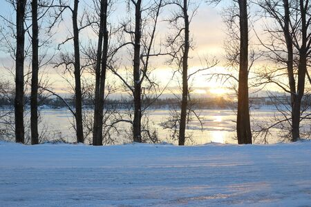 treated: Beautiful winter day. Snow on the bank of the river. Trees under the snow. The low winter sun.