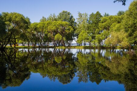 Landscape, bright day. Trees, water, bright sky