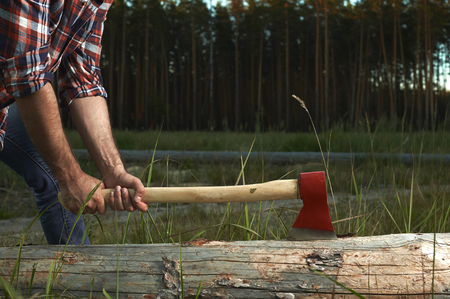 axe: Hands of Lumberjack with Axe cut a Tree