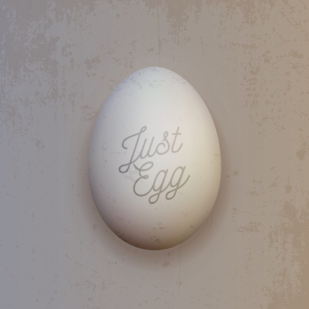 Realistic white chicken Egg. Vector Food Object