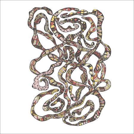 gusanos: Dibujado a mano coloridos Worms Doodle. Ilustraci�n Biolog�a Foto de archivo