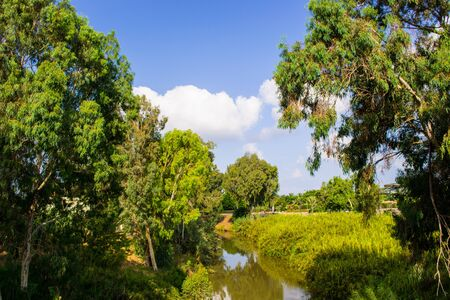 View of summer park Yarkon in Tel Aviv,Israel