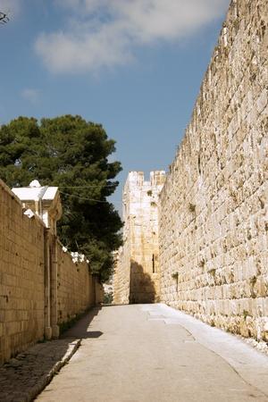 Narrow street of old city.