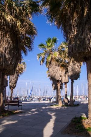 The yachts at the coast Tel-Aviv, Israel