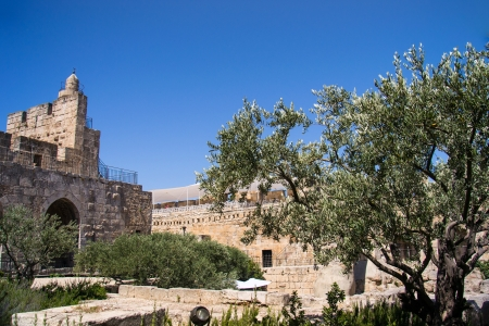 David Tower .The Old City Jerusalem.Israel Stock Photo - 20939906