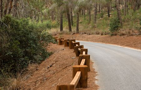 guardrail: Road in the forest with wooden guardrail in perspective Stock Photo