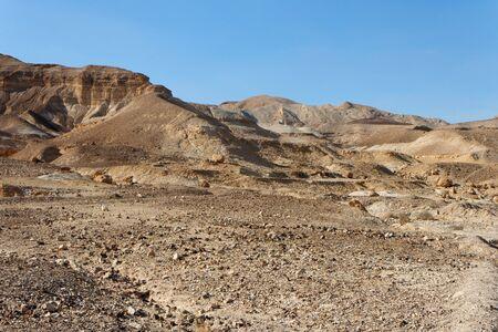 desert landscape: Rocky desert landscape