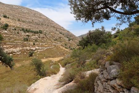 judean: Judean mountain landscape  Stock Photo