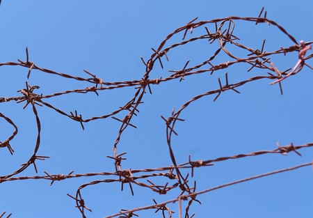 Twisted strands of barbed wire on sky background Stock Photo - 7325536