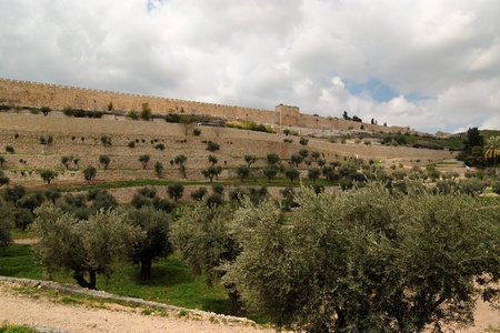 View of the Kidron Valley and the Temple Mount in Jerusalem photo