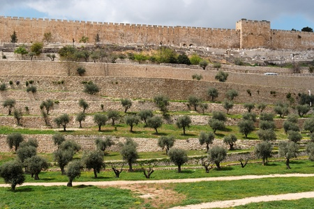 judaism: Terraces of the Kidron Valley and the the wall of the Old City in Jerusalem