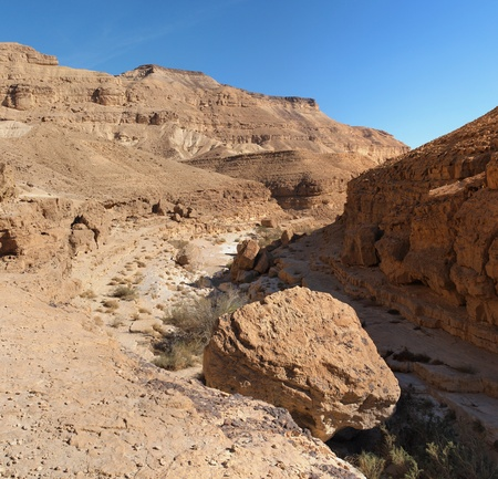 canyon negev: Scenic desert canyon