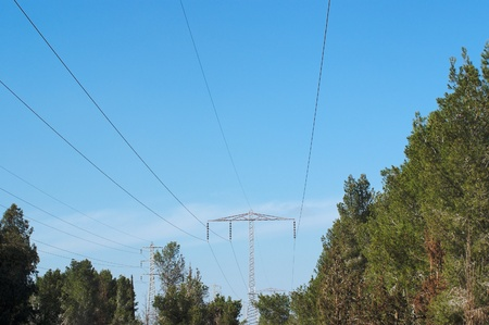 Overhead power transmission line over the pine forest photo