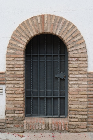 Large window or door with grate and metal mesh photo