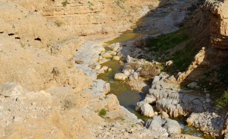 nahal: Wadi Qelt or Nahal Prat creek in Judean Desert near Jericho