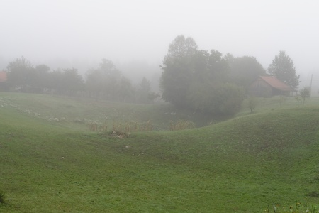 vanish: Rural landscape with fog in the morning