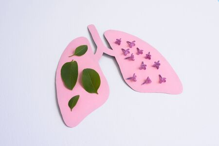 Pink paper lungs with flowers and leaves on the white background. Minimal paper art. Coronavirus Covid 19 concept. World Tuberculosis Day or World Lung Day concept. Pink Hole Lungs as symbol of healthy lungs.