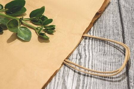 Top view paper craft shopping bag with branch oh green leaves on it on the wooden background. Zero waste concept. Say no plastic. Space for text. Flat lay.