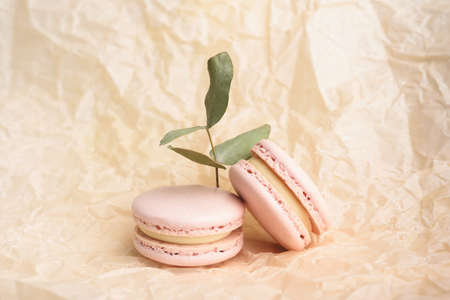 Two tasty french yellow colored macarons and eucalyptus on the beige wrinkle paper background. Colorful macarons. Front view.