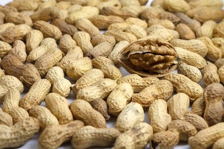 nourishing: healthy tasty nourishing walnut and peanuts isolated on white background