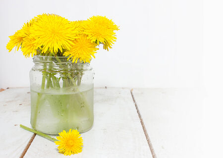yellows: Yellows dandelions in a glass jar with water