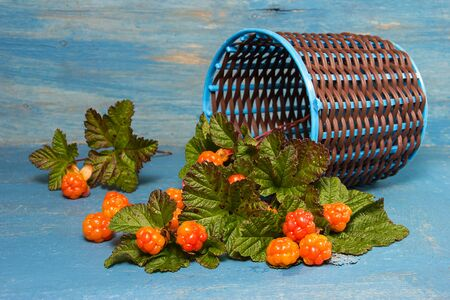 chicout�: Cloudberry tumbled from the basket on a blue background.