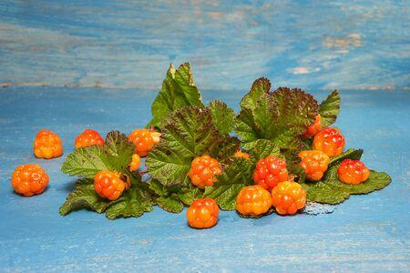 chicouté: Orange chicouté mûrs sur table bleue