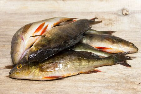 several raw fish on a gray  background Stock Photo