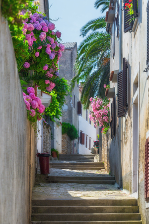 Traditional European Mediterranean architectural style in the streets and houses, yard, porches, stairs, shutters in the afternoon sunbeam, surrounded by vine, hydrangea and palm at summertime.