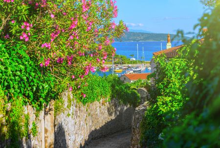 Wonderful romantic summer afternoon landscape coastline Adriatic sea. Narrow streets paved with stone. Krk island. Croatia. Europe. Stock Photo