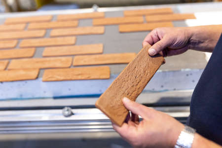 Industrial production of elastic clinker tiles. Modern technologies with the use of polymeric materials and natural clay. Facade ceramic tiles for exterior decoration of houses.