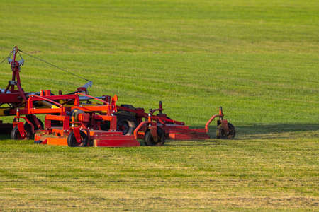 Industrial production of lawn grass in rolls. Trimmed field, resistant to mechanical impact and drought of green lawn grass. A tractor with a mower goes through the field, mows and mulches the grass.