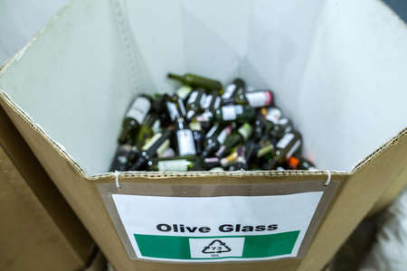 Sorting recyclables. The sorted olive glass bottles, is placed in a container with the appropriate marking.