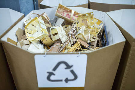 Sorting recyclables. The sorted wooden rubbish, is placed in a container with the appropriate marking.