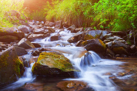 Mountain stream(creek) in the stones and green grass banks in mountain forest. Crystal clear water - rare condition of modern enviroment. Backlight warm sunbeam a light shallow fog. Long exposure. Stockfoto