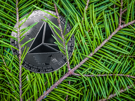 Coins of tron on the branches of spruce. Christmas gift.