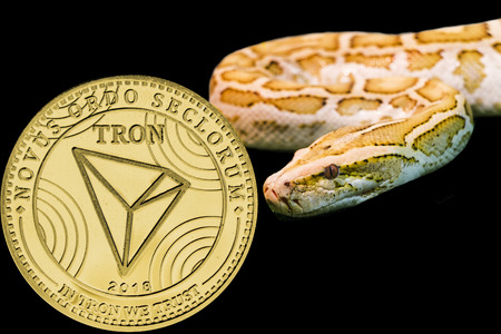 Concept yellow snake and coin cryptocurrency Tron.