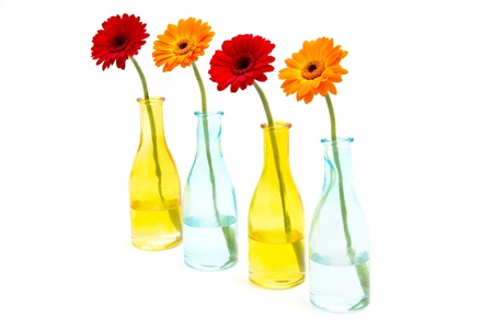 Several gerberas in colored glass vases photo