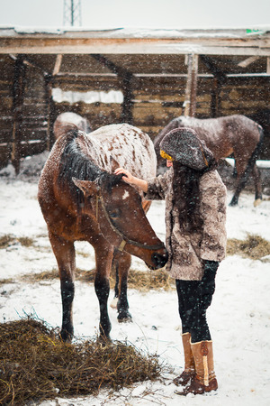 girl stroking young cute foal in the snow