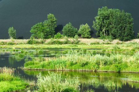 marsh in Kazakhstan, Asia