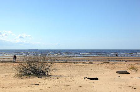 desert coastline (3)