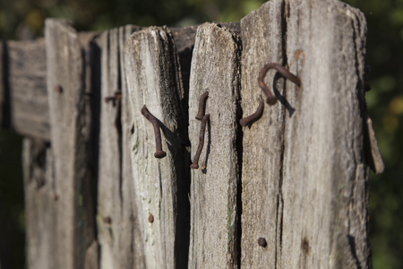 wornout: Part of the old worn-out wooden fence with rusty nails sticking outloseup of old fence with nails