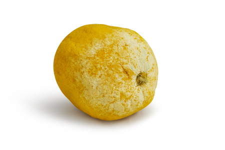 depraved: Tainted lemon on a white background. With clipping path