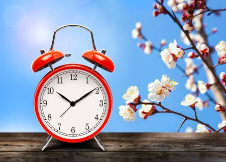 Vintage red alarm clock on wooden table or bench in the spring season on the background of a blooming fruit tree background. Return to summertime. Switch to daylight saving time.