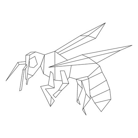 Bee insect polygonal illustration on white Illustration